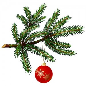 pine_tree_christmas_ball_xmas_christmas_christmas_tree-501227717