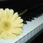 piano-4-806512-m