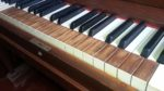 Piano Maker's Corner: A Slightly Mad Idea